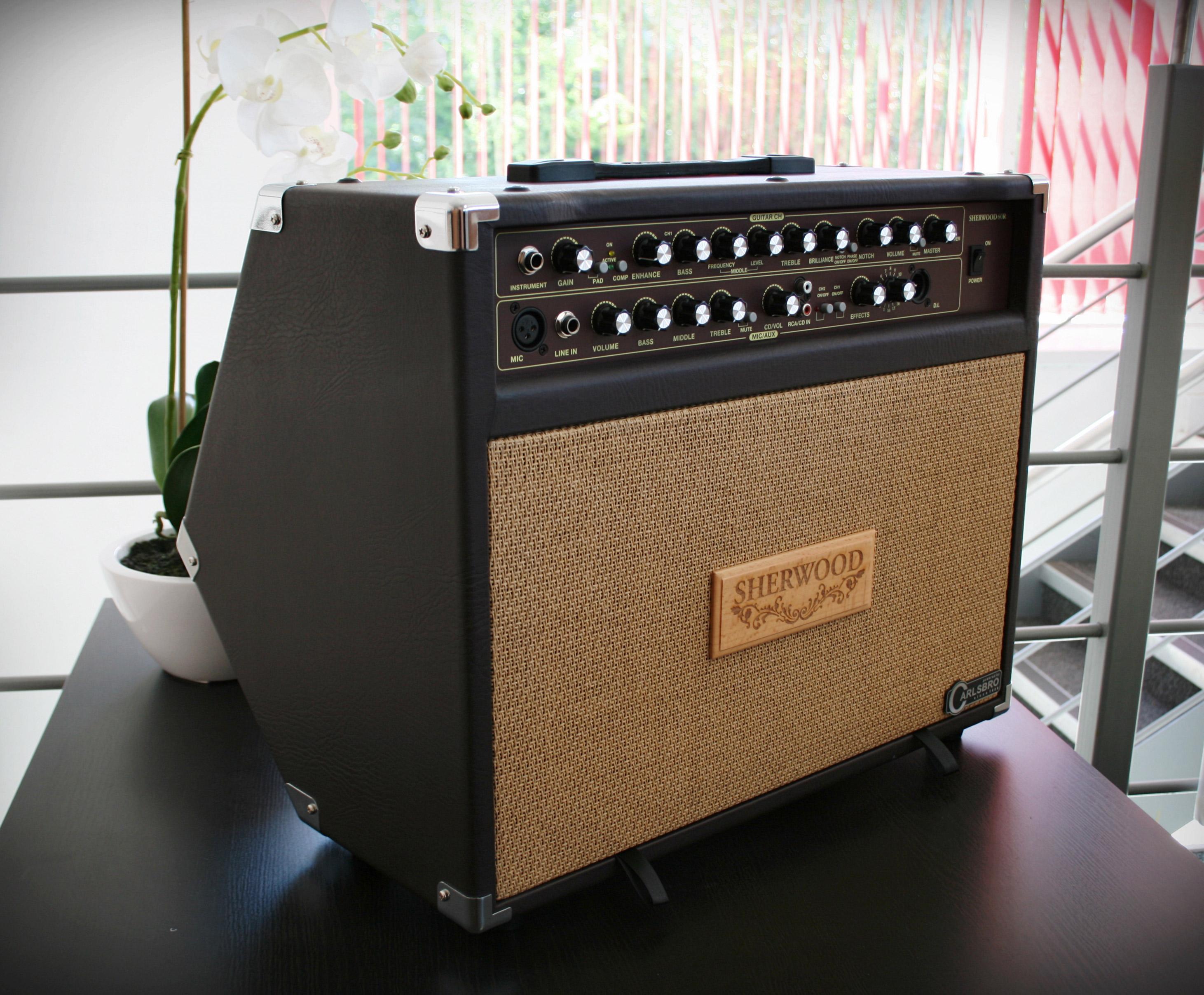 Carlsbro Sherwood60 60w Akustic Guitar Amplifier Combo Bass